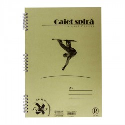 CAIET SPIRA A4 MATE BASIC PIGNA 80 FILE 5/SET